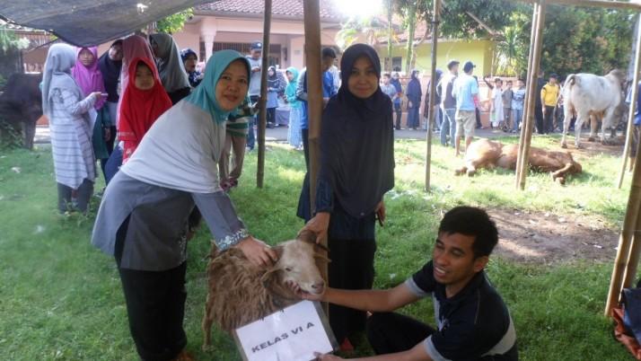 Service Community – Idul Adha